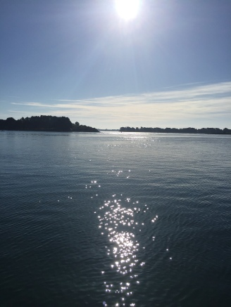 A3. Ile Longue, Golfe Du Morbihan 12.6.17.