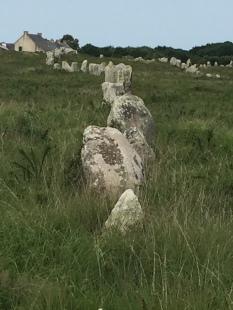 D3. Megaliths at Carnac 12.6.17.