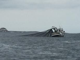 A1. Fishing boat near Riveira 7.8.17.