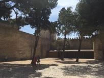 G3. Castelo de S Jorge 23.8.17.