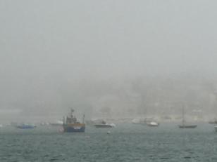 Q5. Sao Martinho foggy 17.8.17.