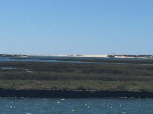 D2. Praia de Faro 4.9.17.