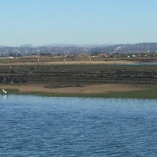 D5. Praia de Faro - 5.9.17.