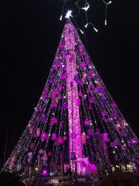 A6. Christmas tree in Murcia with different lighting effect 2.12.17.