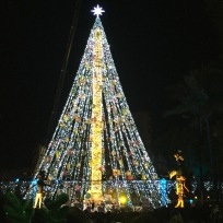 The Christmas tree at Murcia